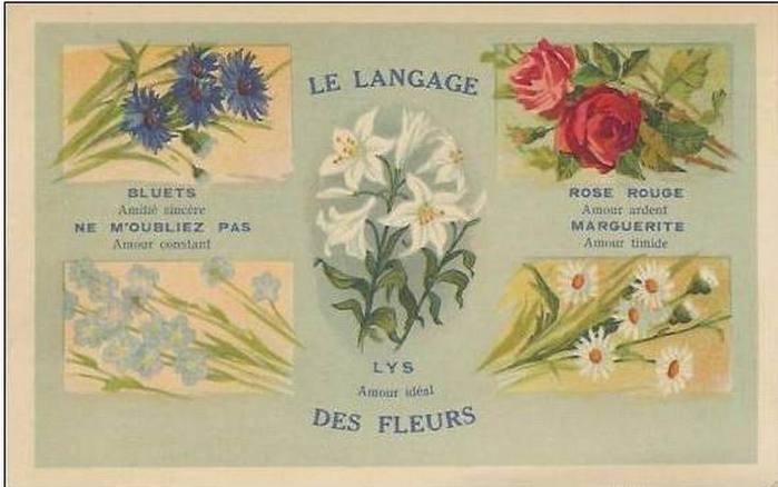 Язык цветов старинные открытки 68
